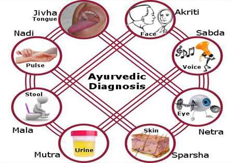 Amruthendu Ayurveda hospital